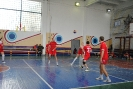 Финальные игры по волейболу 2015_15