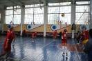 Финальные игры по волейболу 2015_18